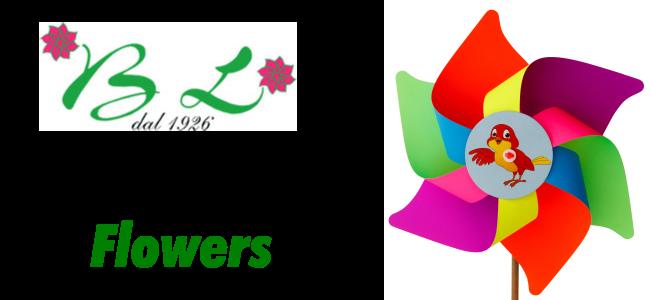 girandole flowers